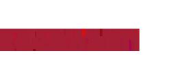 edelmann logo 4